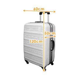 Checked Baggage  d7f09845d5e5c